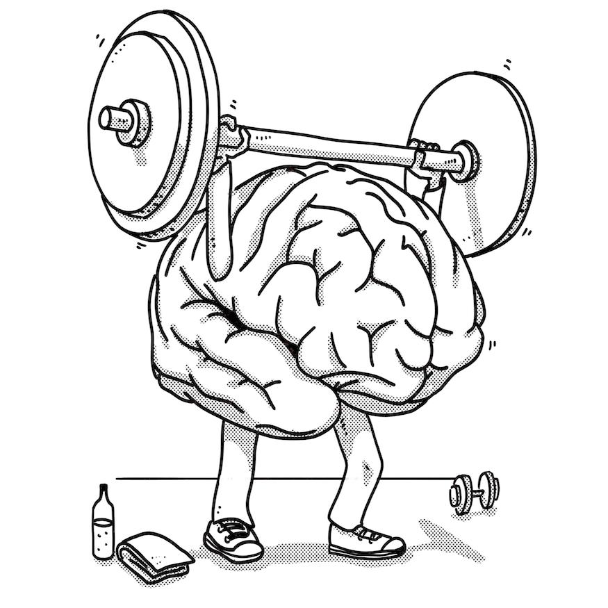 cerebro libro mindfulness ejecutivo
