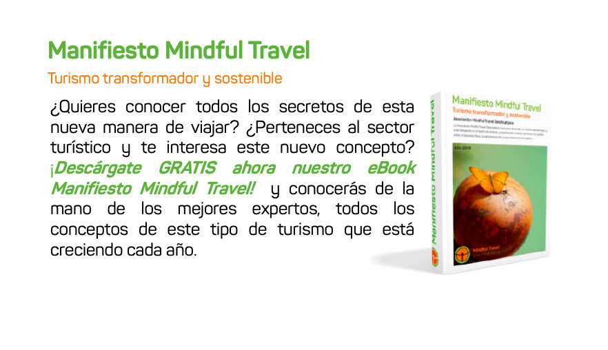 ebook Mindful Travel